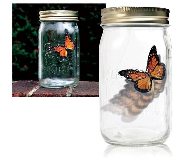 My Butterfly Jar